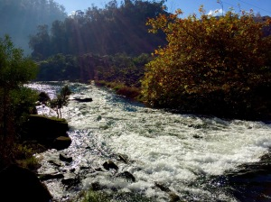 Cataract Gorge, Tasmania